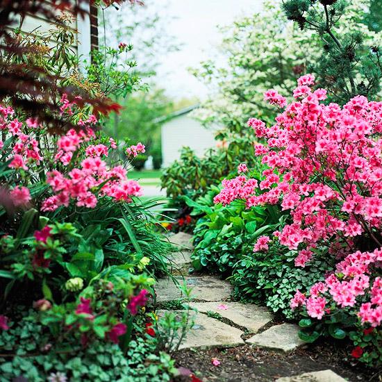 Bí quyết tạo vẻ đẹp ấn tượng cho vườn nhà - Archi