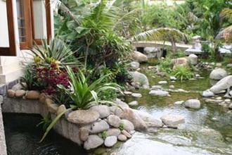 san vuon 1 1342089593 Cách giúp bạn sắp xếp đá sân vườn hợp phong thủy